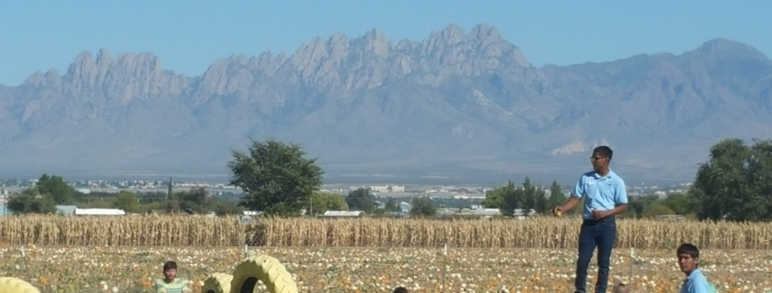 las cruces homes for sale, homes for sale in las cruces nm, arista development,